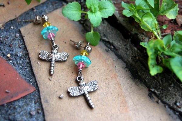Dragonflies of Spring